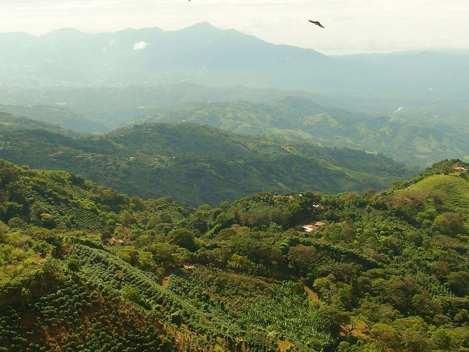 Costa Rica's Charming Central Valley