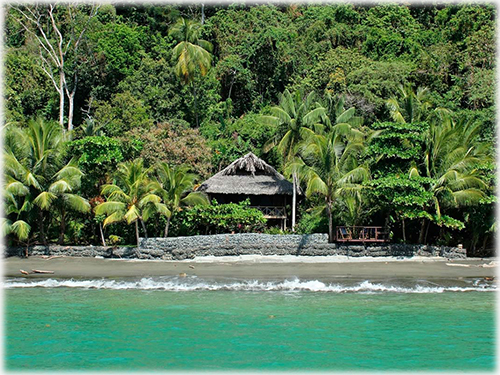 Golfo Dulce Property Surrounded by Pure Nature, ID CODE: #3206