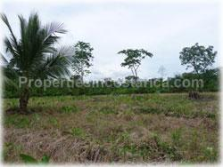 Limon real estate, for sale, land for sale, river, swimming pool, Limon properties, 1766