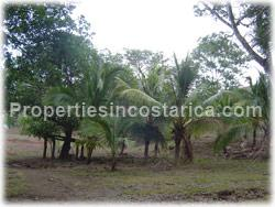 Guanacaste land, for sale, Santa Cruz for sale, large land, development, investment, 1623