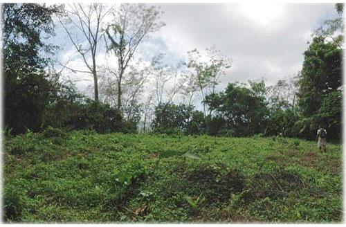 Land for sale, uvita real estate, oceanview land, beach properties, south pacific real estate