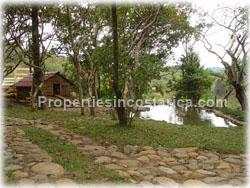 Cartago real estate, property for investment, hotel developing, land for hotel