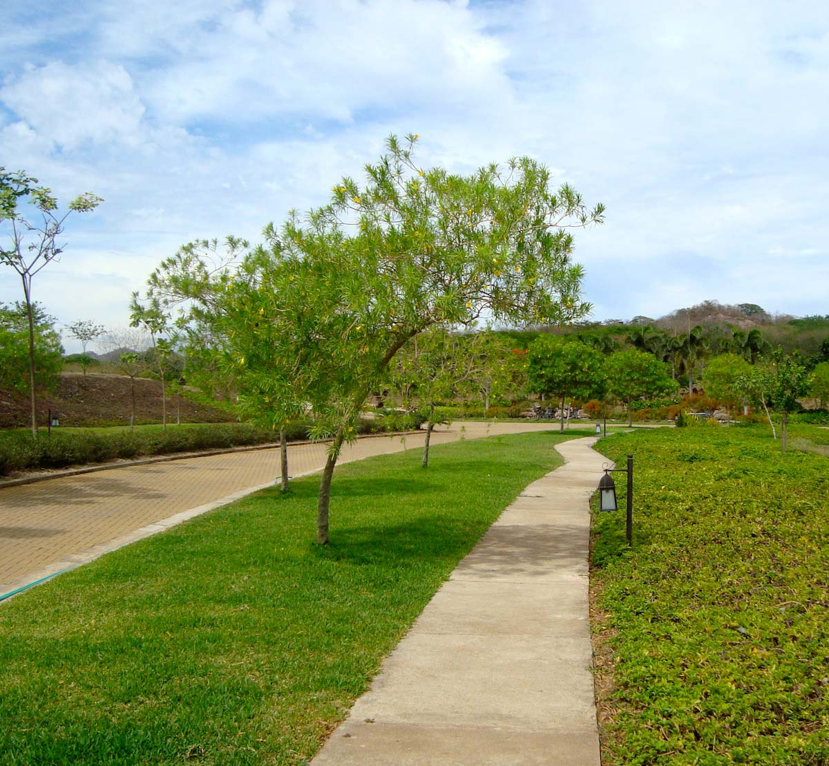 his amazing lot is located inside the desirable and fast growing gated community of Rancho Villa Real.