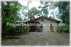 Dominical forest, rain forest, Dominical for sale, ecological, eco lodge property, investing opportunity, internet, nature, flora, fauna, animals, waterfall, creek, beach access, 1470