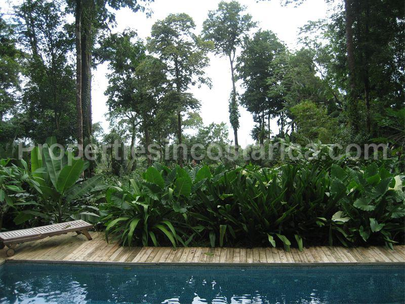 Asian Style Home For Sale In Uvita Id Code 1616