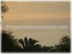 Costa Rican trees, possibilities, arge family house, health retreat, hotel, bungalows