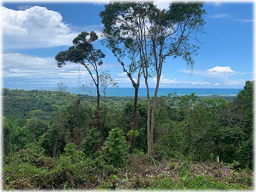 Belleza Serena, 4 Acres of Whale's Tail Ocean View Land in UvitaID CODE: #3769