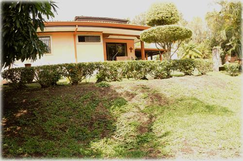 central valley homes, city homes, for sale, prime location homes, escazu real estate, pool, palm trees