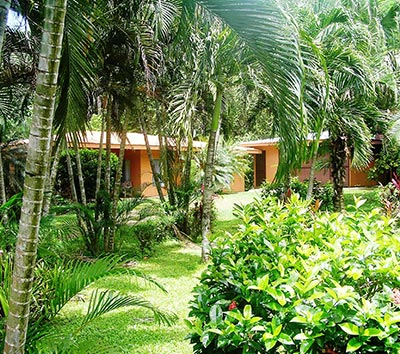 Large Tambor Country Home on Huge Lot – Near Beaches – Low Price