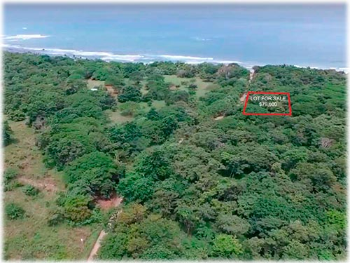Surfers DREAM LOT 2 min Walking to Lola's & Playa Avellanas     - ID CODE: #3611