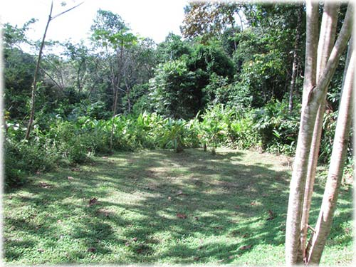 ready to build, lots for sale, for sale, osa, south pacific, development, investment, lands,