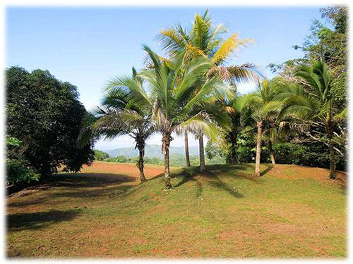 land for sale, estate property for build, land with partial ocean views, estate property with nature