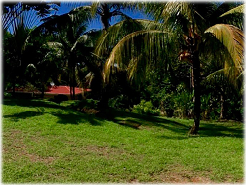 land for sale, for sale, investment opportunity, south pacific, lots,