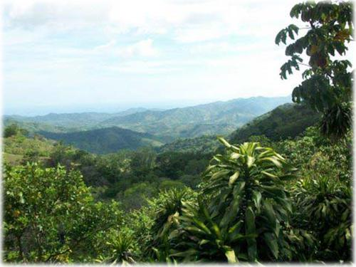 farm and mountain real estate, mountain views real estate for sale, near to beach