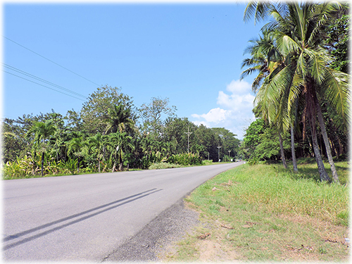 beach, properties for sale, land and lots, dominical real estate, investment, development opportunities