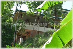 Dominical investment, property complex, B&B, bed and breakfast, investment potential, large property, fertile land, acres, furnished, for sale, large pool, internet, 1474