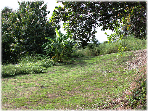 paquera real estate, for sale, land for sale, lots, investment opportunity, building site, north pacific