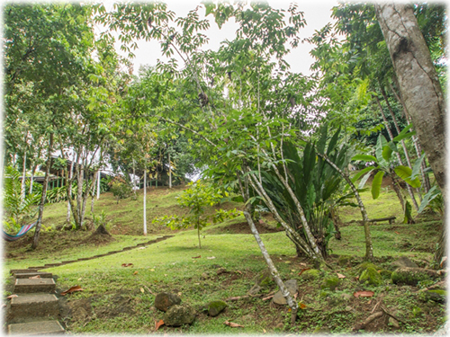 osa, south pacific, for sale, nature, jungle lodge, coast, beach, close to everything, waterfalls