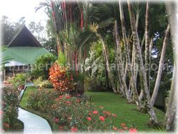 Dominical Costa Rica, Dominical Real Estate, Laguna Dominical, Dominical properties for sale,  Mountain Estate, mountain views, river access
