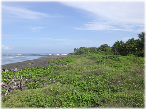 land for sale, for sale, beachfront, ocean view properties, development, beach, north pacific