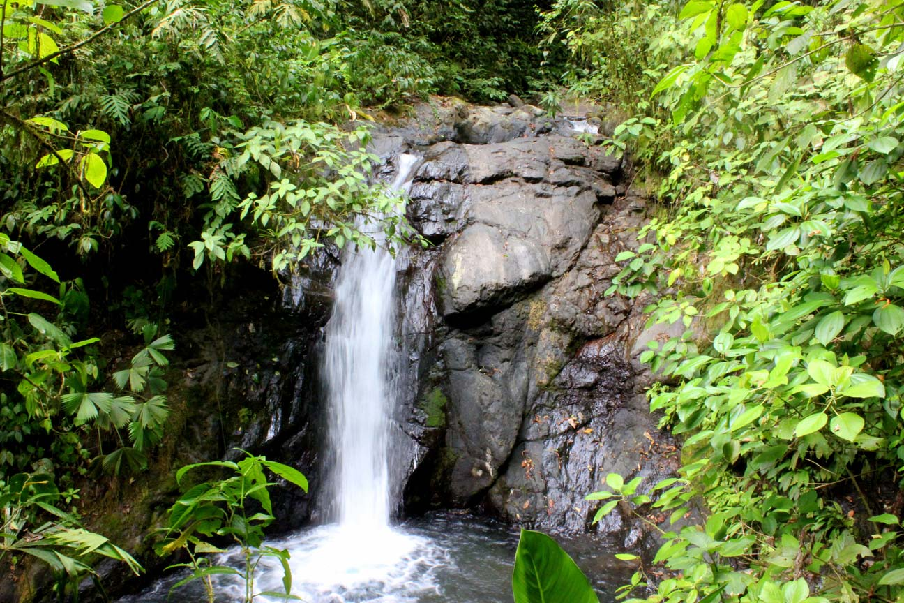 Land Eco Development Lots Puntarenas Central Pacific Waterfall Property