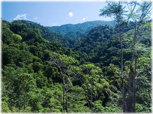 land for sale, eco development, lots, puntarenas, central pacific, waterfall property