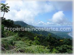 ominical real estate, Dominical for sale, nature, ocean view, mountain view, flora, fauna, wildlife, acres, large, investment opportunity, 1477