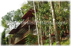 Ballena costa rica, real estate, for sale, ecolodge, pool, oceanview, investment, commercial, business, 1890