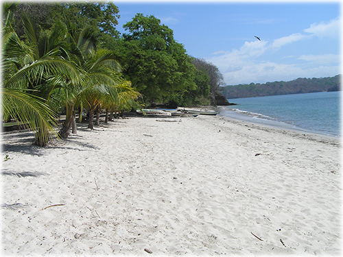 central pacific, for sale, lots, land, development, investment opportunity