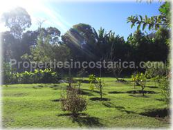 Escazu for sale, lot for sale, Escazu real estate, investment, house, nature, golden mile, trees, flora, fauna, 1440
