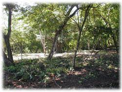 Beach front lots for sale in Guanacaste
