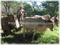 Guanacaste farm for sale, Guanacaste house for sale, Santa Cruz real estate,