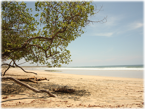 close to the beach, avellanas beach, santa cruz, guanacaste real estate, tamarindo, ready to build, land, ocean view, beach properties, lands and lots
