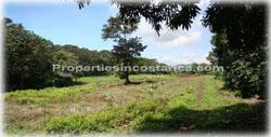 Atenas real estate, Atenas for sale, land for sale, Costa Rica land for sale, Costa Rica real estate, international investment, land investment, hectares for sale, acreage for sale, best investments, world best weather, Atenas land, 1781