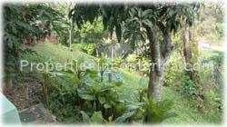 Escazu large estate, for sale, jungle surrounded, private, secure, swimming pool, jacuzzi, 1647