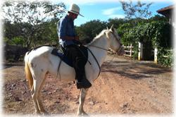Tamarindo Guanacaste, Tamarindo real estate, Equine estate, horse ranch, horse breeding, gated community, Tamarindo Beach properties