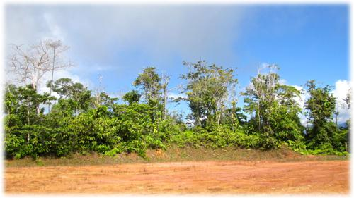 ocean view, beach, land for sale, investments, land for development, residential lots, south pacific real estate, ready to build, prime lots, opportunity to develop lands, for sale